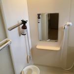 【部屋の公開】我が家の浴室
